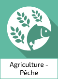 Groupe Agriculture, sylviculture et pêche