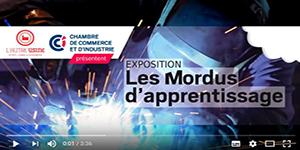 exposition les mordus de l'apprentissage - CCI Maine et Loire